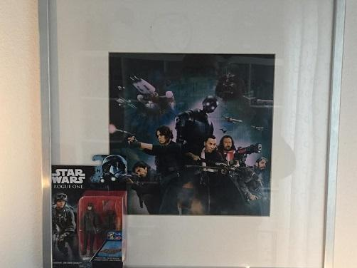 Framed-Rogue-One-Hasbro-Sergeant-Jyn Erso-small.jpg